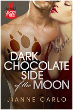 JC_LIR_DarkChocolateSideoftheMoon_coversm